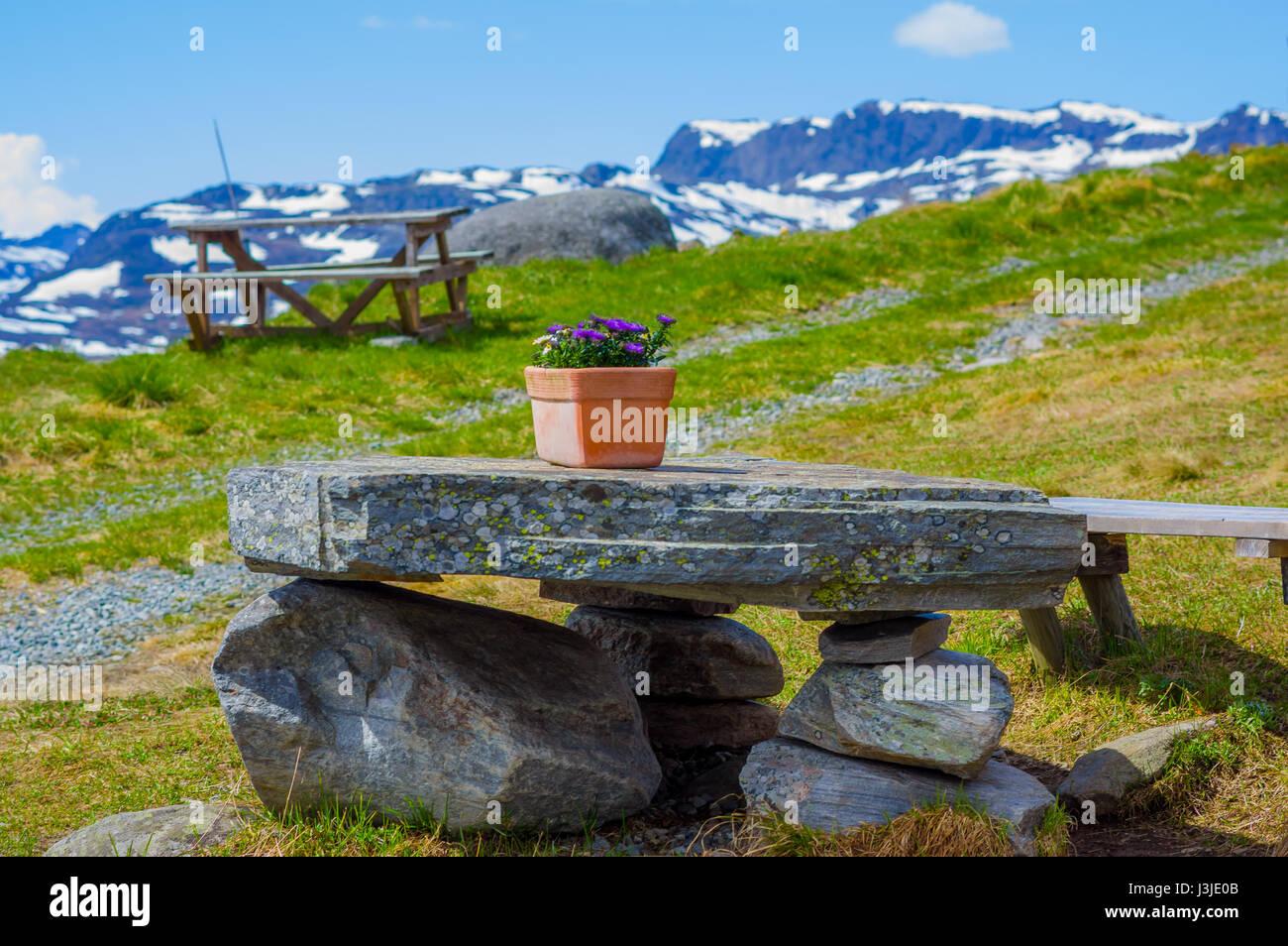VALDRES, NORWAY - 6 JULY, 2015: Fantastic picninc spots along roadway crossing Valdresflya mountain range with stunning - Stock Image