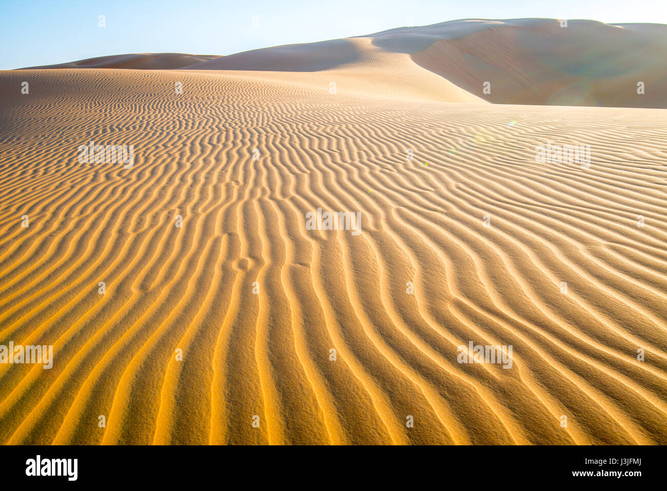 Liwa Oasis, Abu Dhabi , United Arab Emirates -, vast desert landscape scattered with rippling sand dunes   The Empty - Stock Image