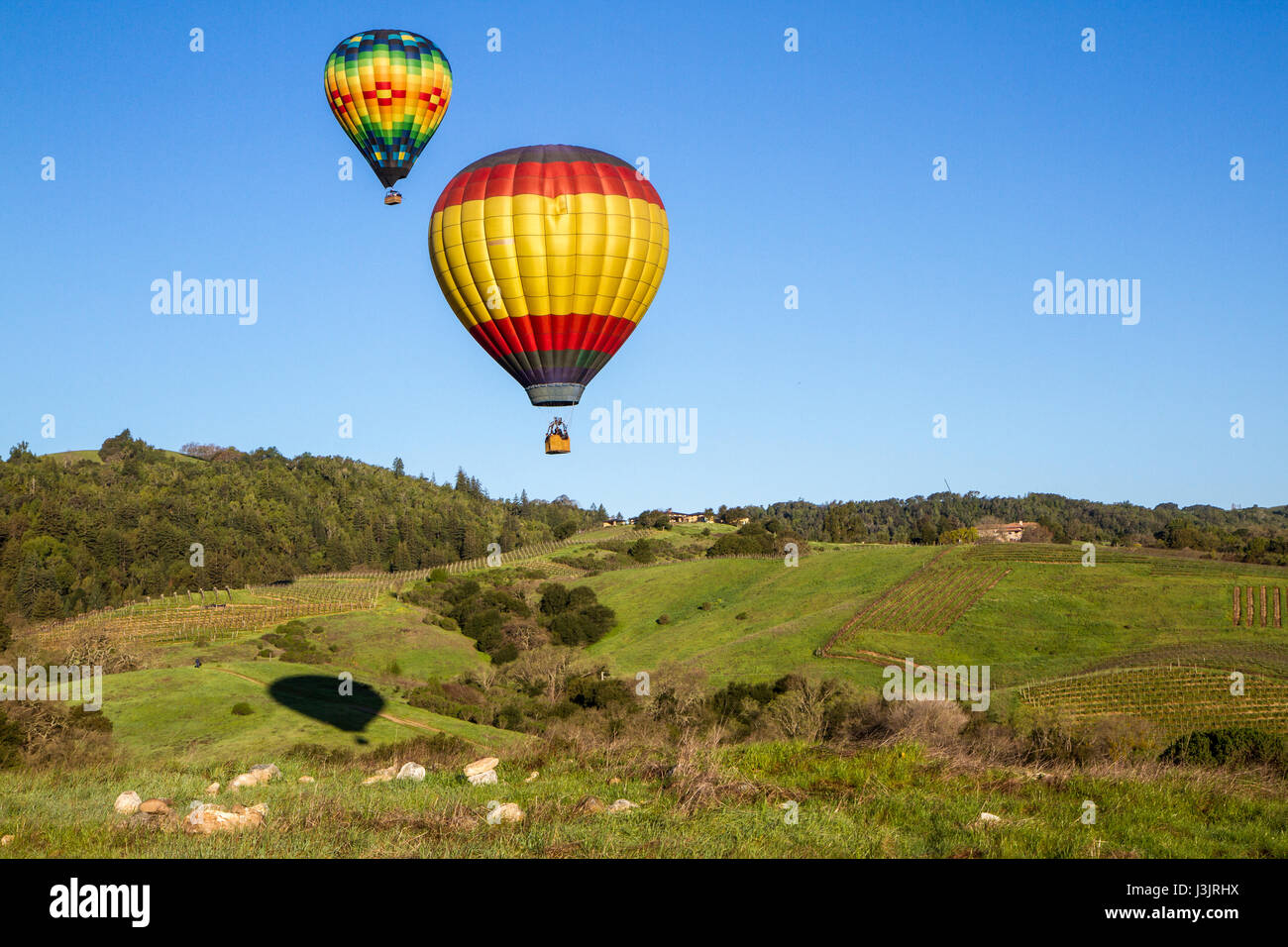 Hot air balloons over Napa Valley vineyards at sunrise with blue sky and copy space. - Stock Image