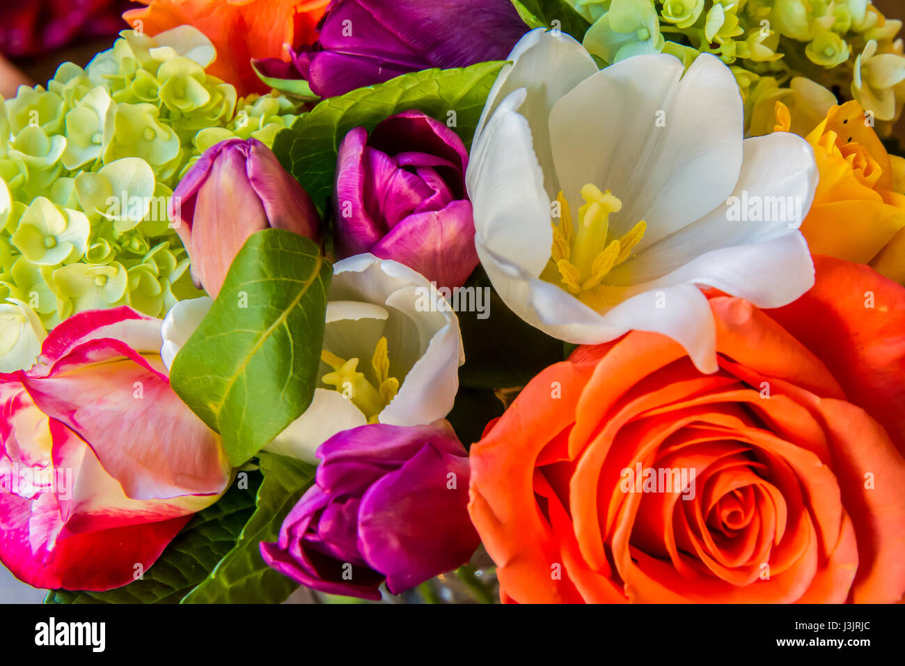 closeup of colorful flower arrangement with various colors of roses ...
