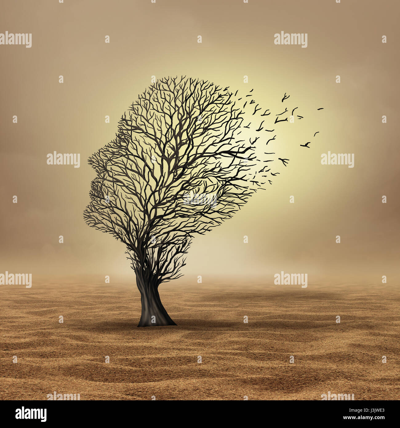 Global warming effect and extreme weather change resulting in drought and environmental damage as a dead tree in - Stock Image