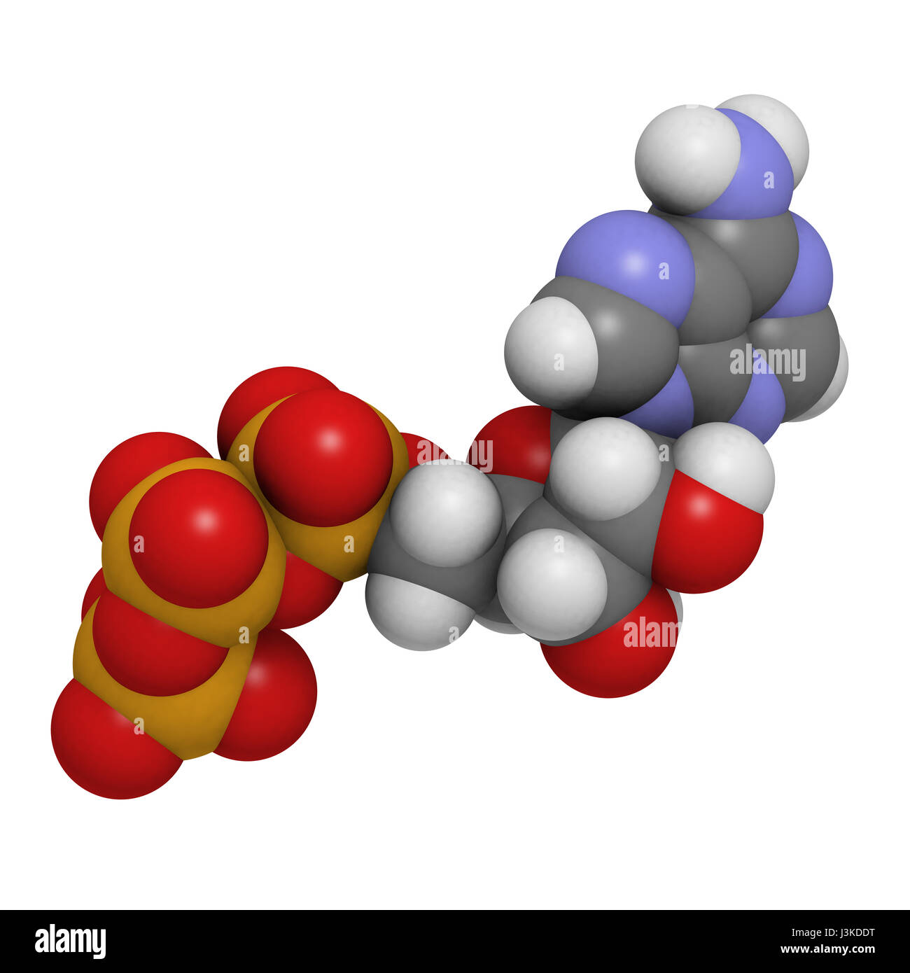 Adenosine triphosphate (ATP) energy transport molecule, chemical structure. ATP is the main energy transport molecule Stock Photo