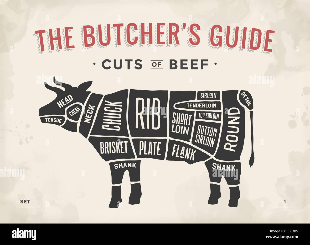 Cut of beef set. Poster Butcher diagram and scheme - Cow. Vintage typographic hand-drawn. Vector illustration. - Stock Image