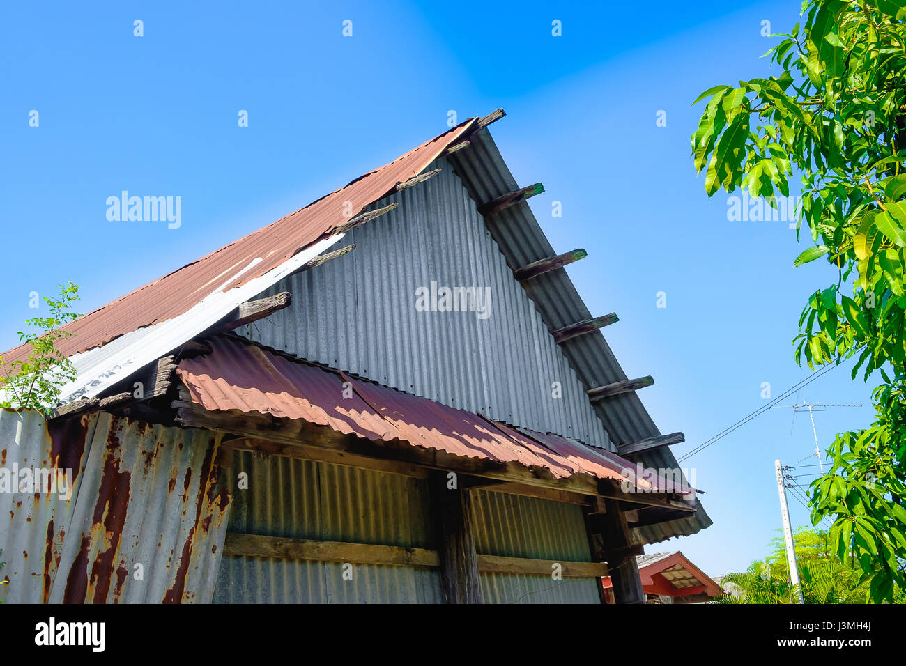 old rusty galvanized sheet (zinc sheet) building with green tree and blue sky. - Stock Image