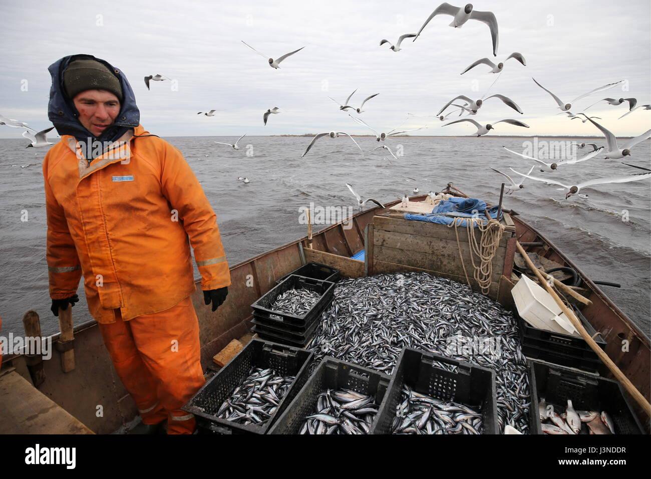 Leningrad Region, Russia. 5th May, 2017. A man fishing ...