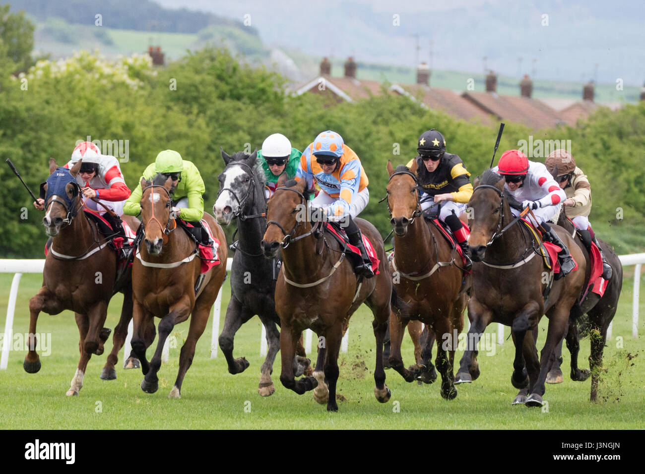 Redcar races charge for the line - Stock Image