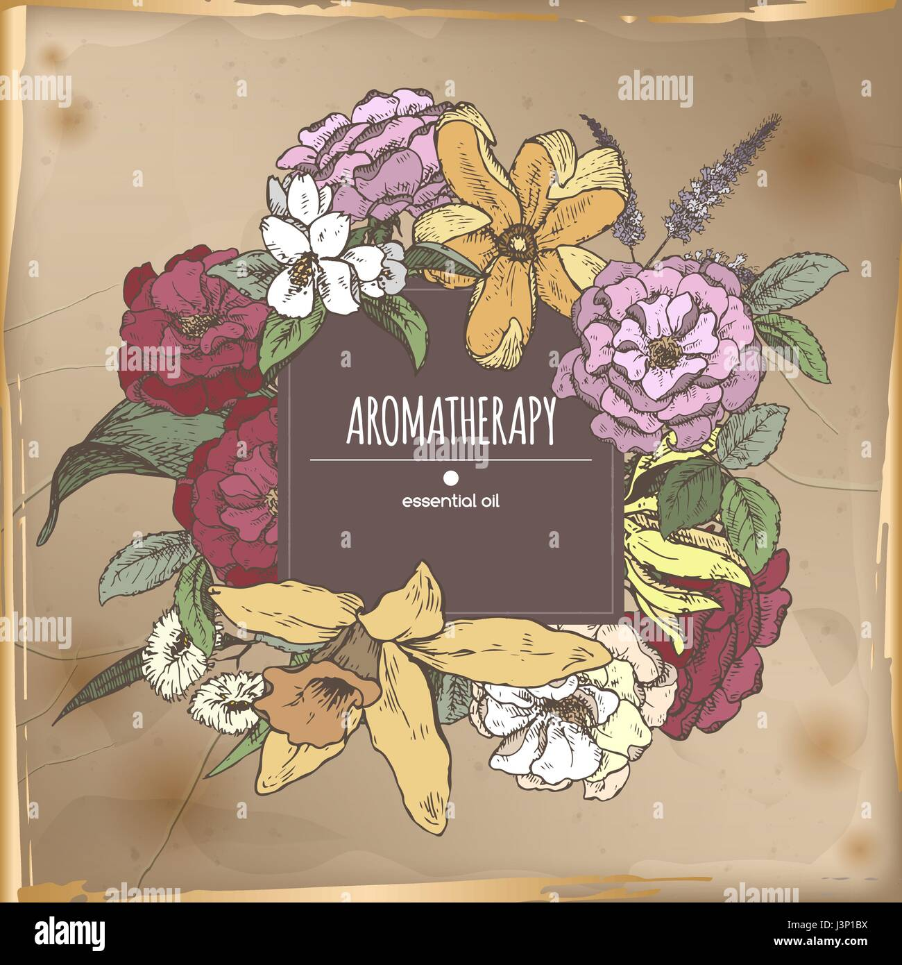Romantic center frame template with aromatic plants sketch on vintage backgruond. - Stock Vector