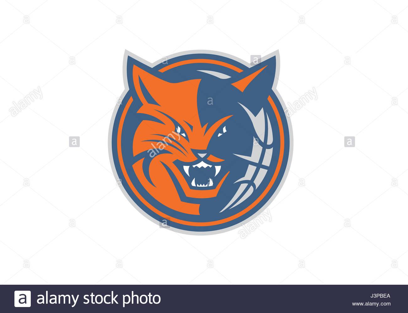 Charlotte Bobcats Nba Team Stock Photo 140018882 Alamy