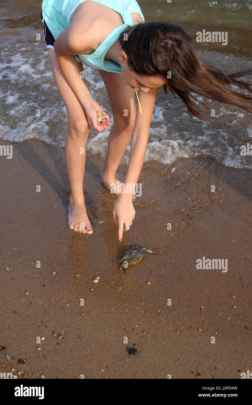 Girl trying to move crab on ocean shore Stock Photo