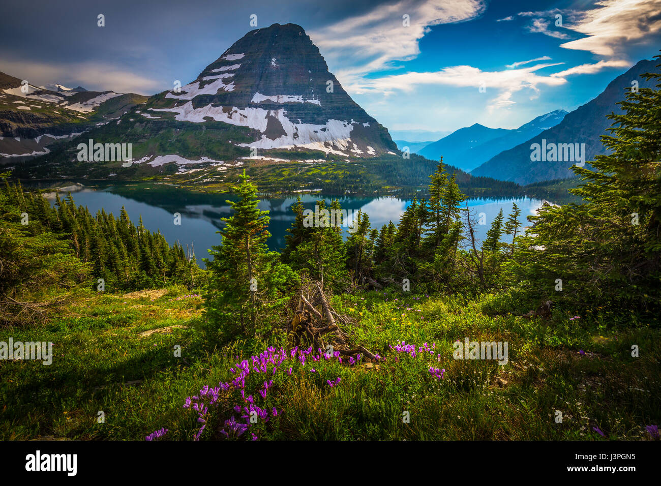 Hidden Lake is located in Glacier National Park, in the U. S. state of Montana. Hidden Lake is surrounded by numerous - Stock Image