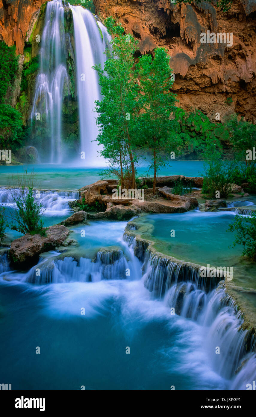 Havasu Canyon is a paradisiacal gorge where turquoise waters cascade into travertine pools and graceful willows - Stock Image