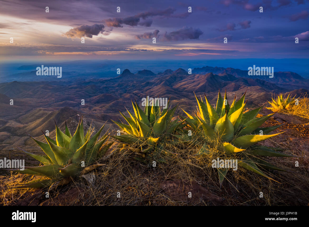 Big Bend National Park in Texas has national significance as the largest protected area of Chihuahuan Desert topography - Stock Image