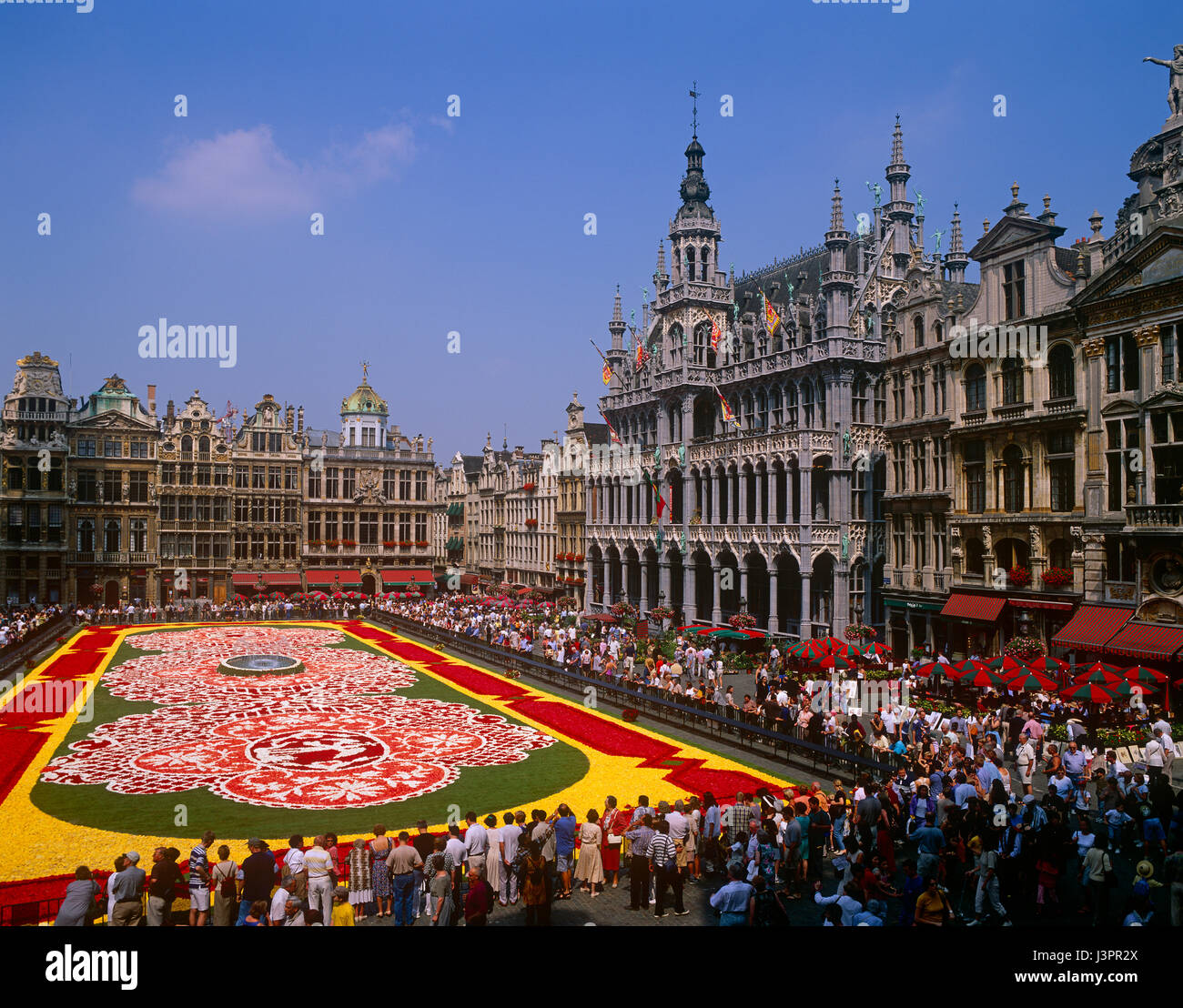 Flower Carpet in the Grand Place, Brussels, Belgium - Stock Image