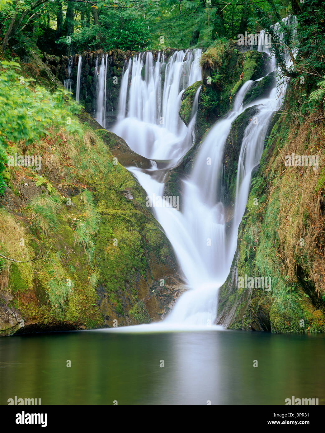 Furnace Falls, Dyfed, North Wales, UK - Stock Image
