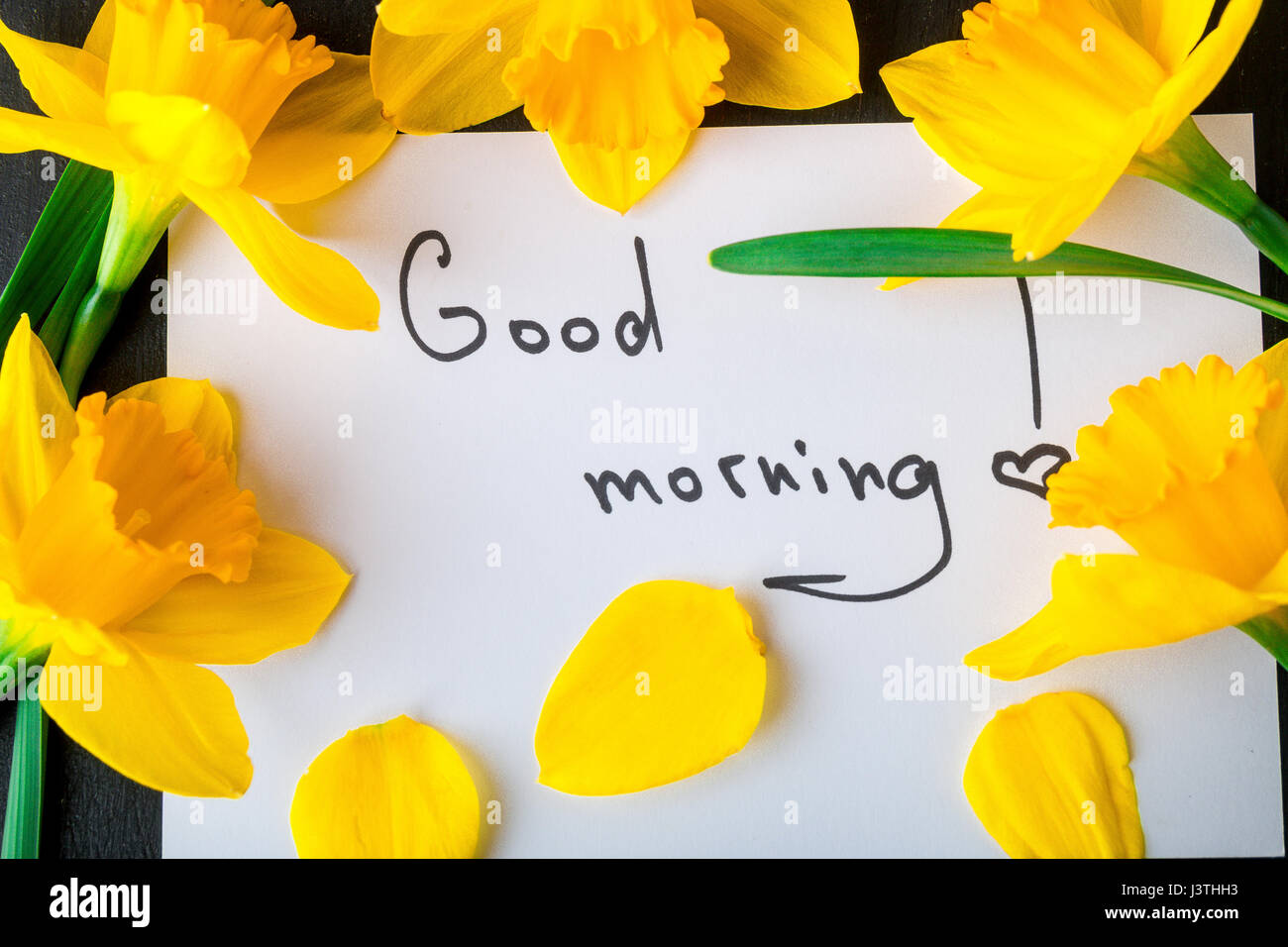 Bouquet of daffodil near card with good morning on black background. Top view. Copy space. Mothers day or Womens - Stock Image