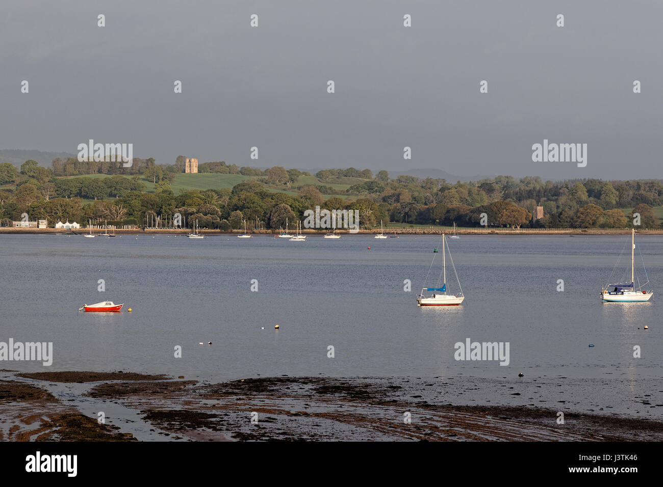 View across the River Exe estuary to Starcross Yacht Club, St Clements Church & Powderham Folly - Stock Image