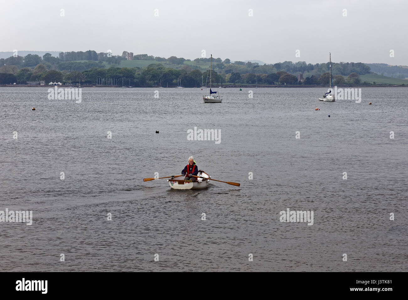 Man rowing boat in the River Exe estuary - Starcross Yacht Club & Powderham in background - Stock Image