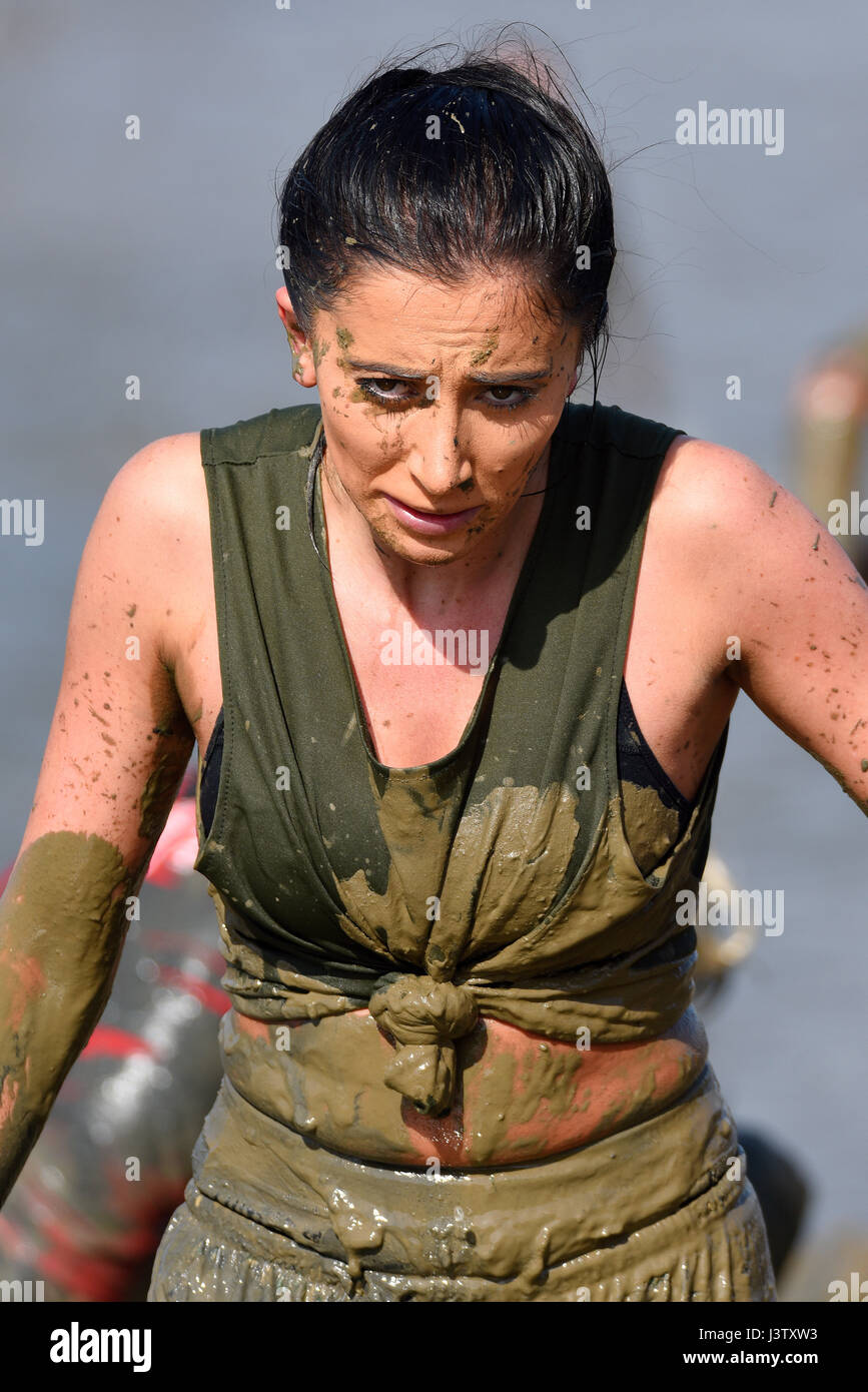 Mad Maldon Mud Race competitor covered in mud, suffering from racing through and across the River Blackwater in - Stock Image