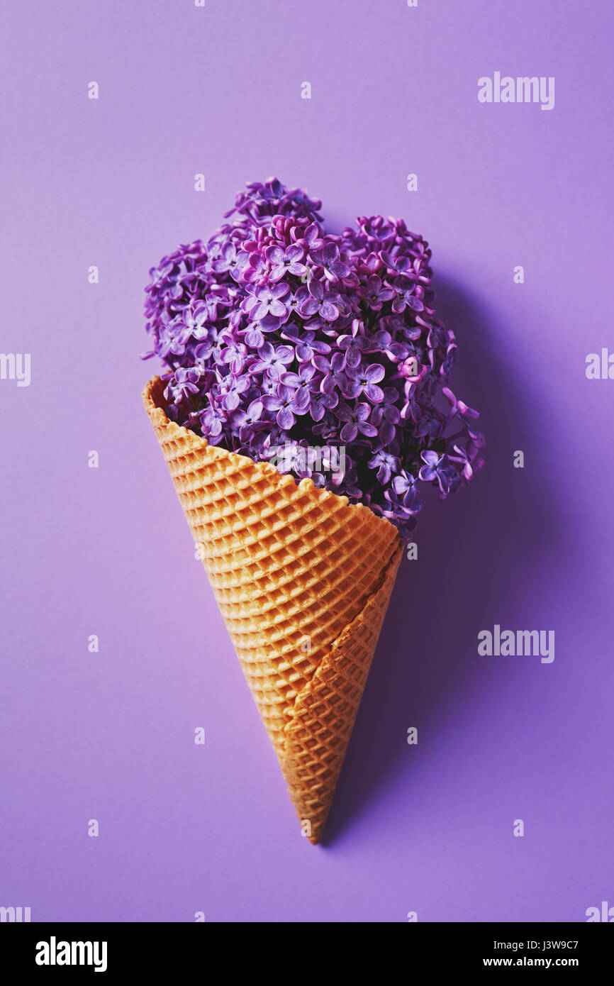 Purple lilac flowers in a wafer ice cream cone. Flower Still Life. - Stock Image
