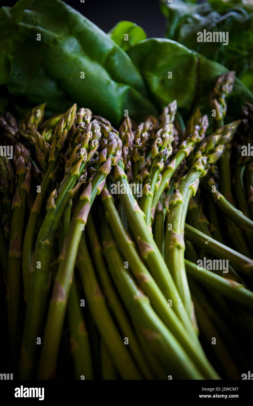 Asparagus Asparagus officinalis Food Edible Tender Spring vegetable Delicacy Asparagus shoots Nutritious Appetizer - Stock Image