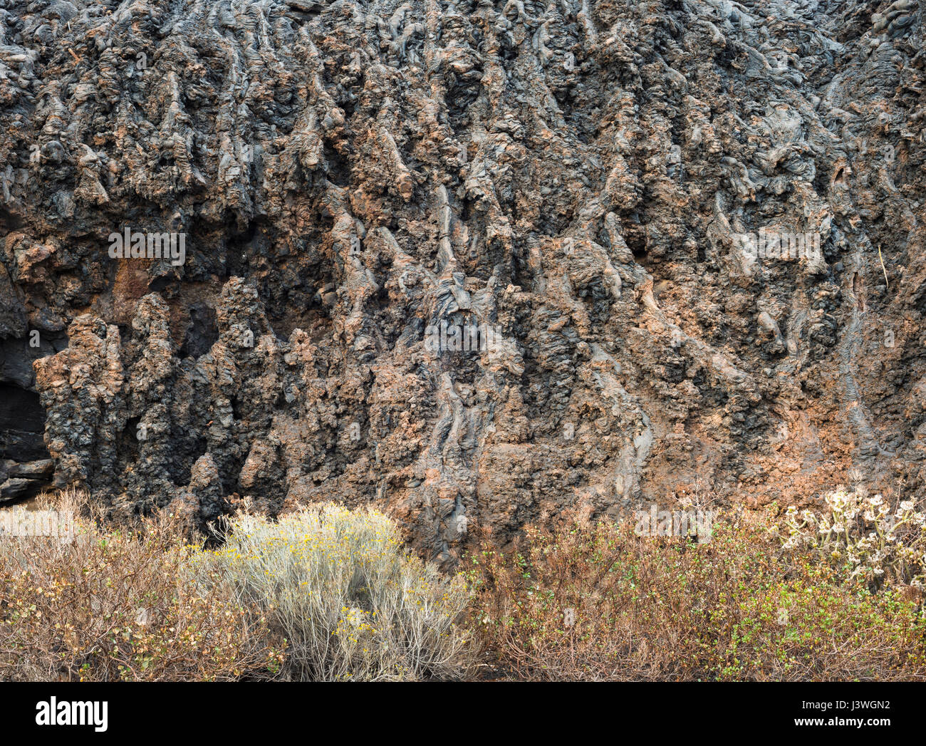Detail of vertical section of pahoehoe or ropy lava on cliff face near La Restinga, El Hierro, Canary Islands, Spain - Stock Image
