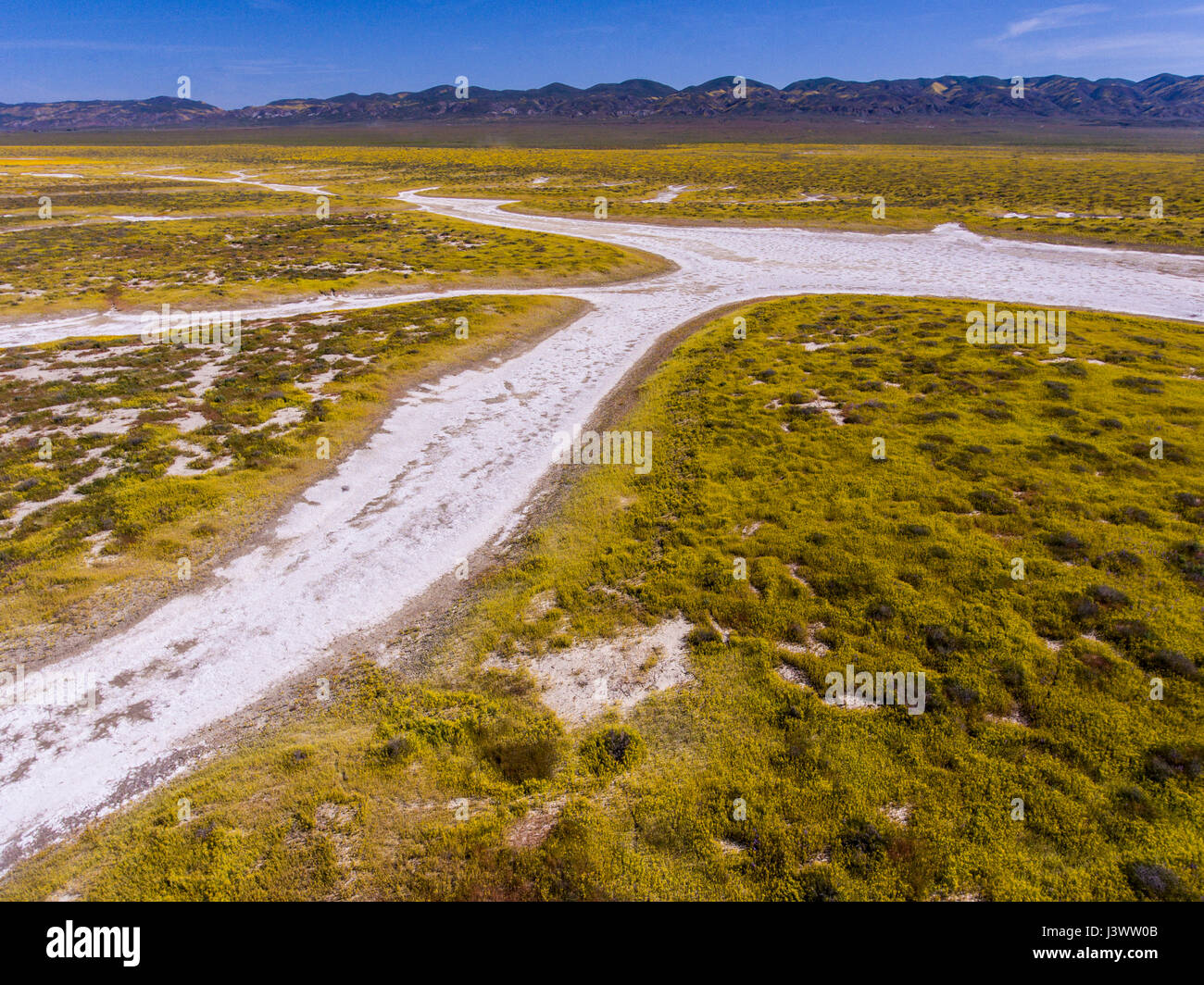 aerial of watershed of Soda Lake and wildflowers, Carrizo Plains National Monument, California - Stock Image