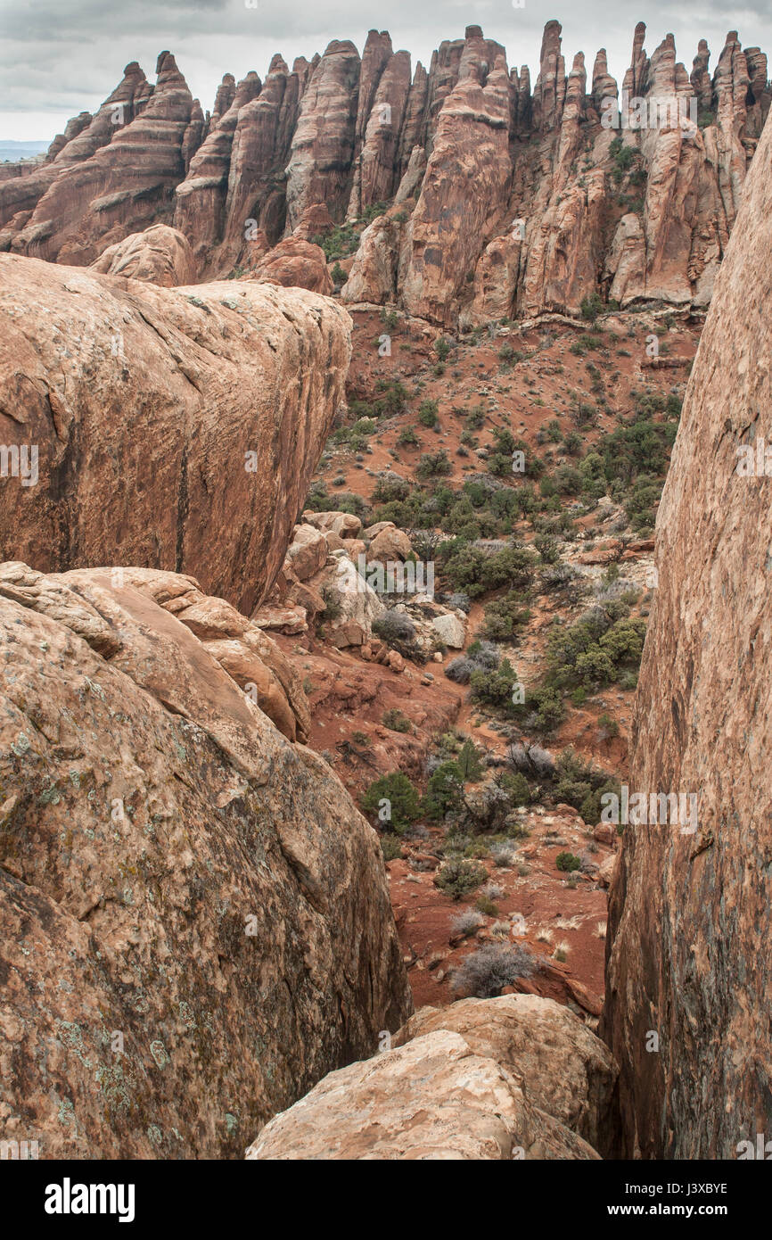 Fins and other red rock formations. Arches National Park, Utah, USA. - Stock Image