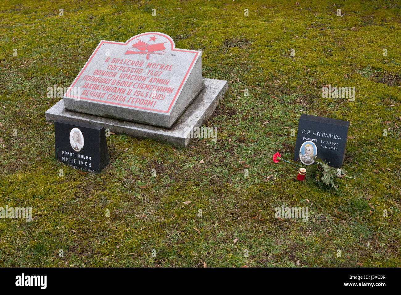 Mass grave of 1,407 Red Army soldiers fallen during World War II on the ground of the Soviet War Memorial at the - Stock Image