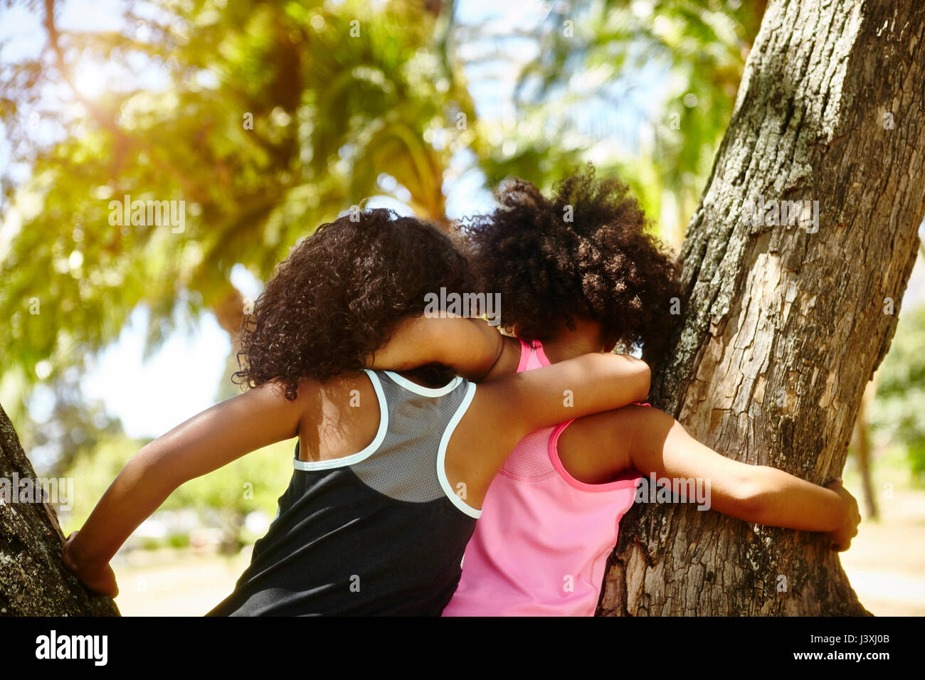 Two young sisters playing on tree. rear view - Stock Image
