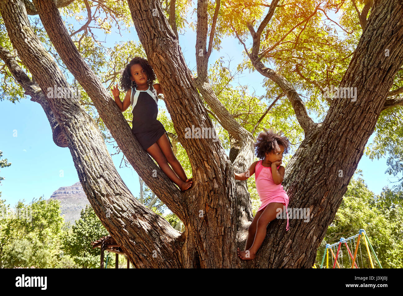 Two young sisters climbing tree - Stock Image