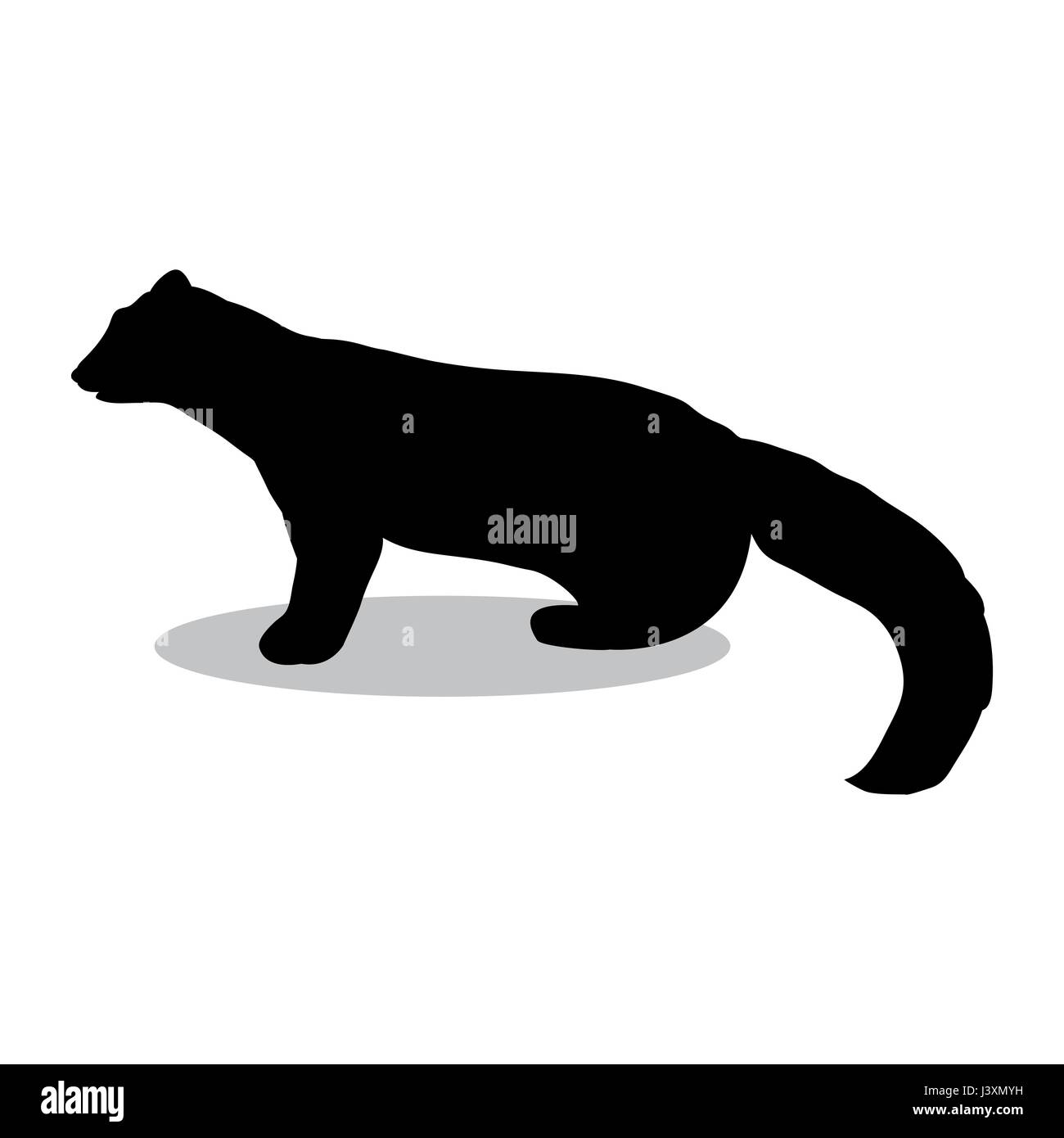 Marten wildlife black silhouette animal - Stock Vector