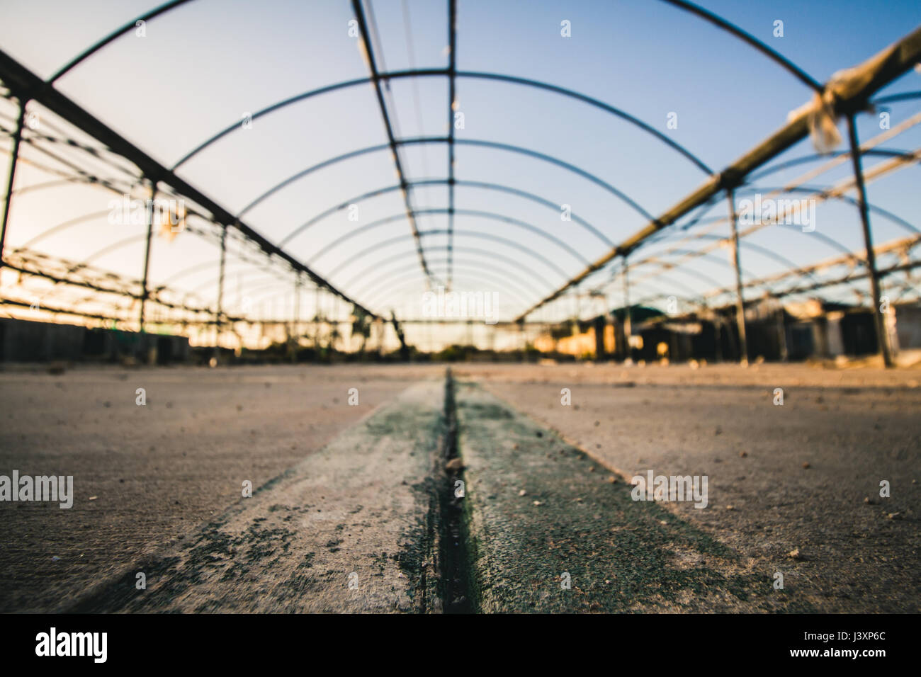 Old blurred abandoned greenhouse with focus on a small stone in the foreground at sunset with warm light. Landscape - Stock Image