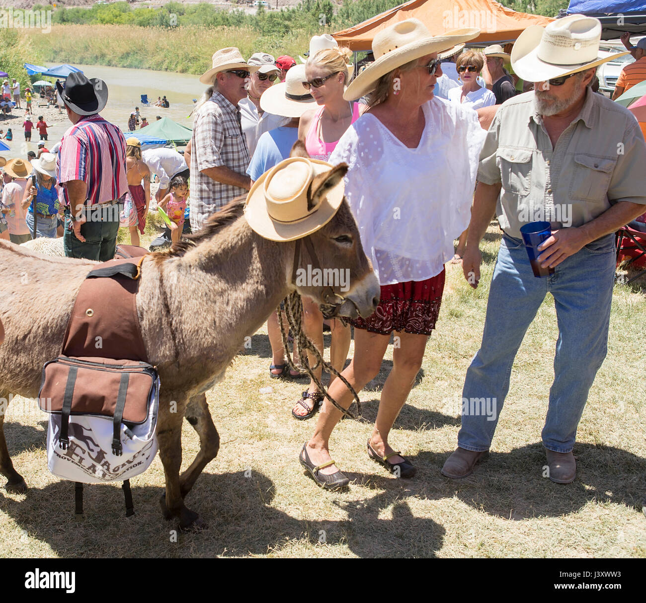 A woman, and her donkey, taking part in Fiesta Protesta, an annual event held to protest the closure of the US-Mexico - Stock Image
