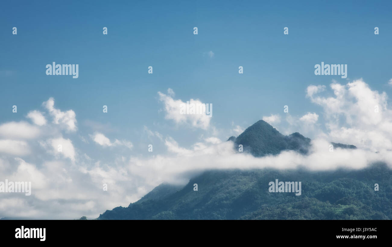 mountain peak landscape of tropical forest with clound and fog background - Stock Image