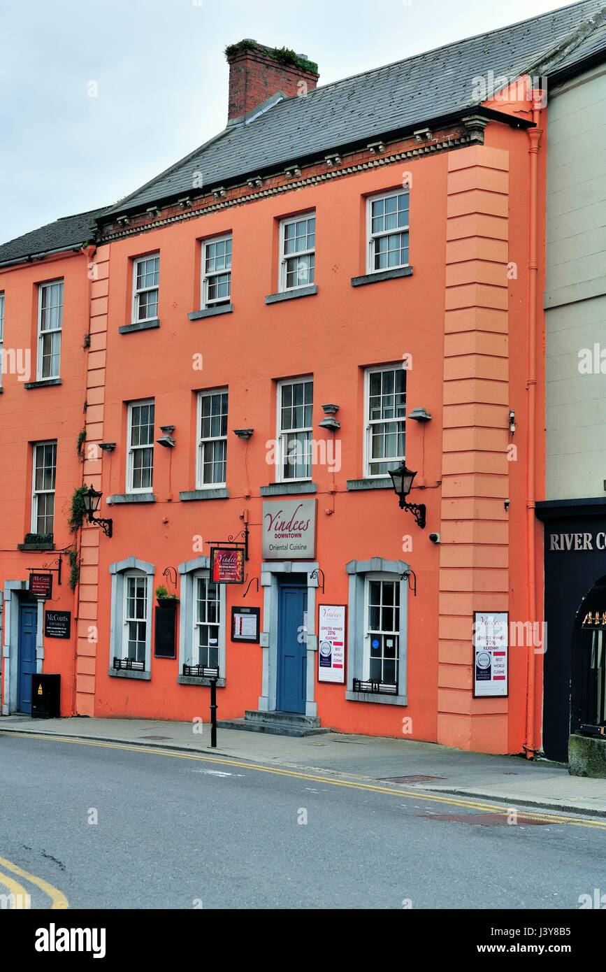 37e6583a16 An Asian restaurant near Canal Square in the city center of Kilkenny