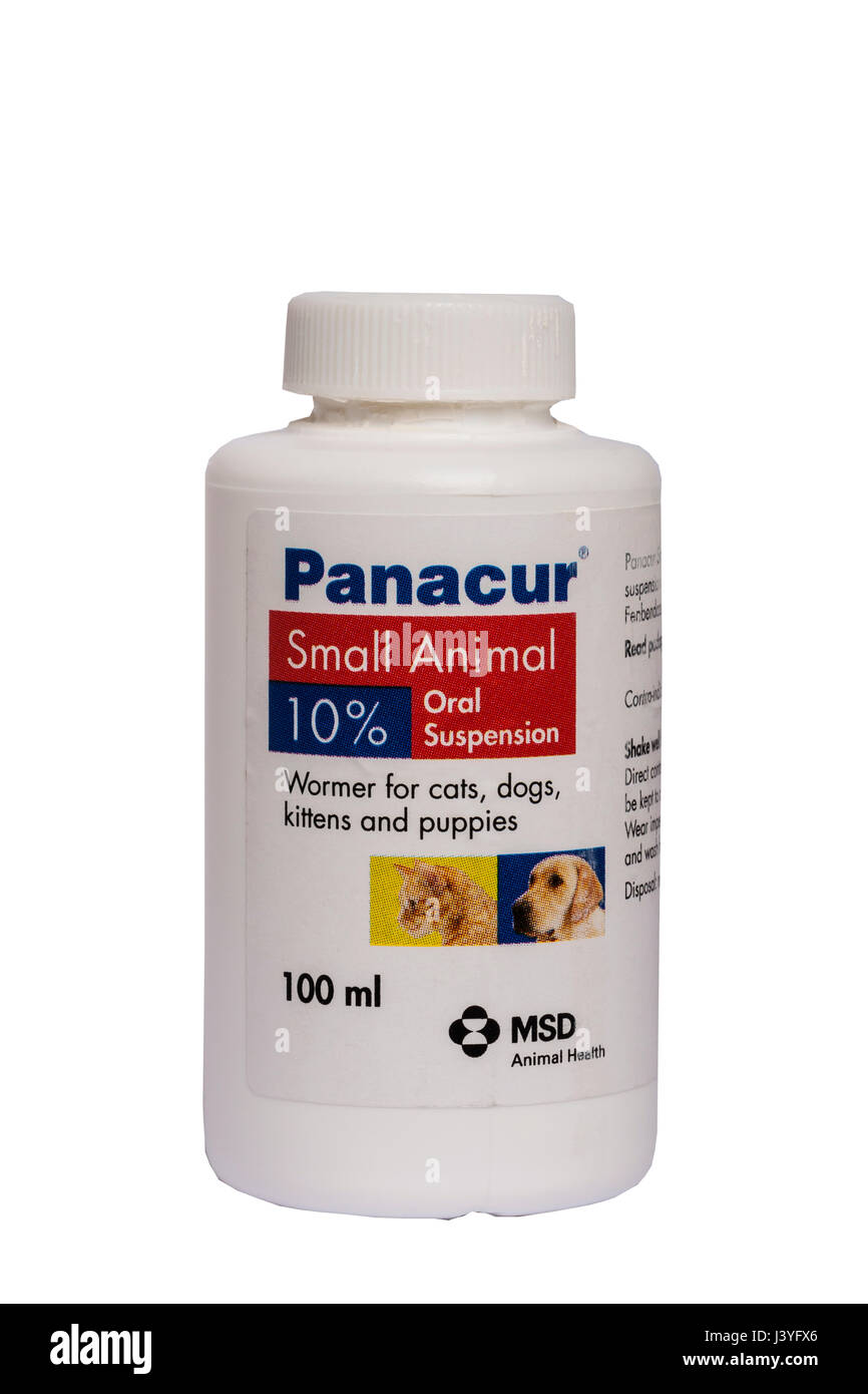 A Tub Of Panacur Small Animal Wormer For Worming Catsdogskittens