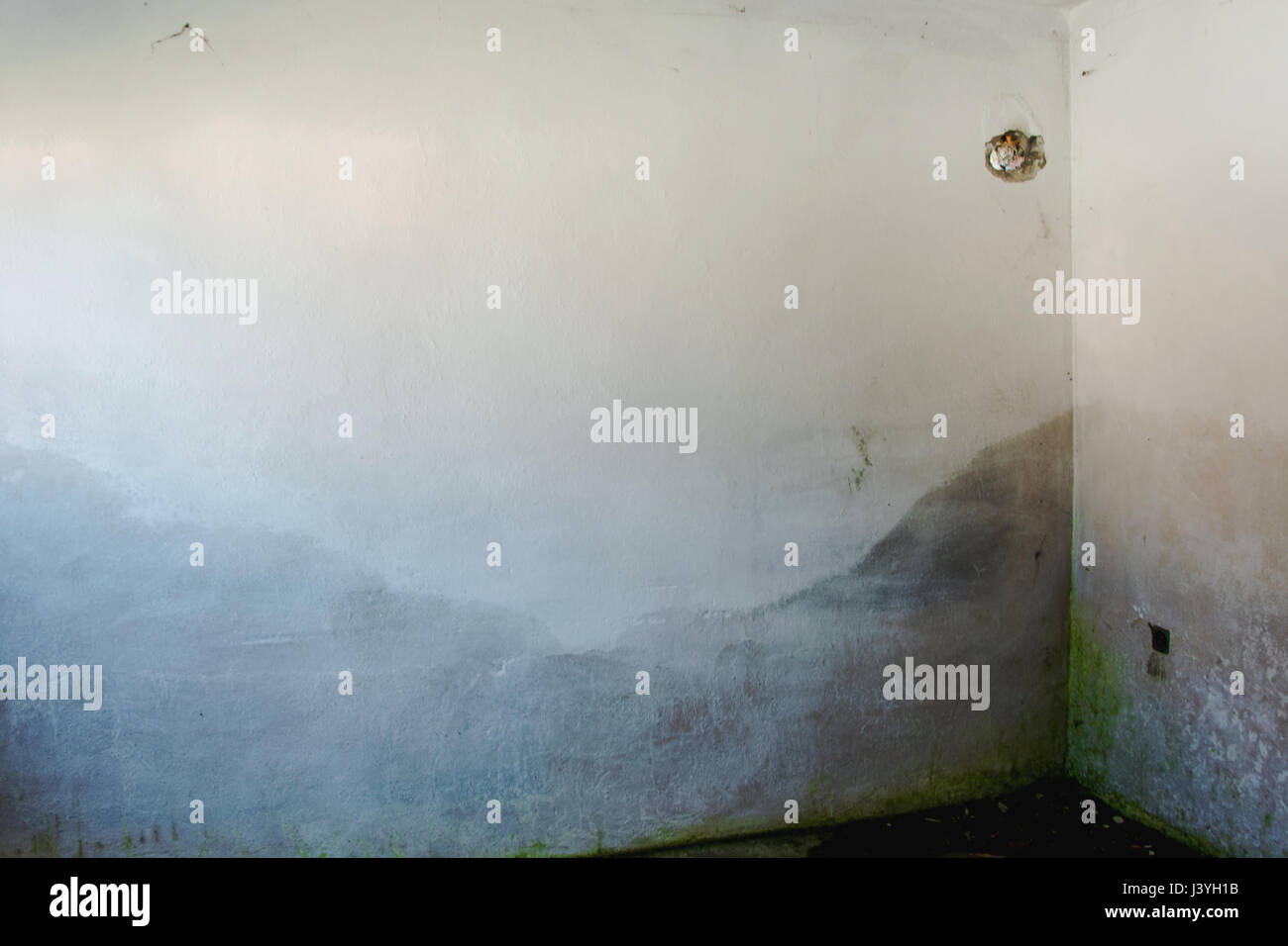 The moisture from the walls - Stock Image