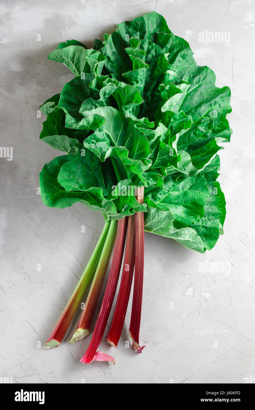 Fresh organic rhubarb stems with leaves on grey concrete stone background - Stock Image