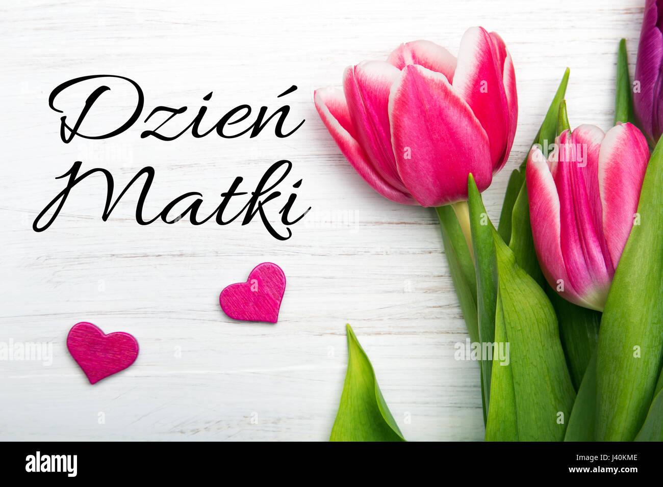 Mothers day card with polish words dzien matki mothers day mothers day card with polish words dzien matki mothers day pink tulip on white wooden background m4hsunfo