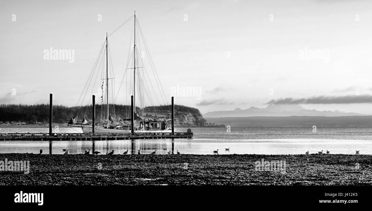 Sailboat docked at dawn BW Image - Stock Image