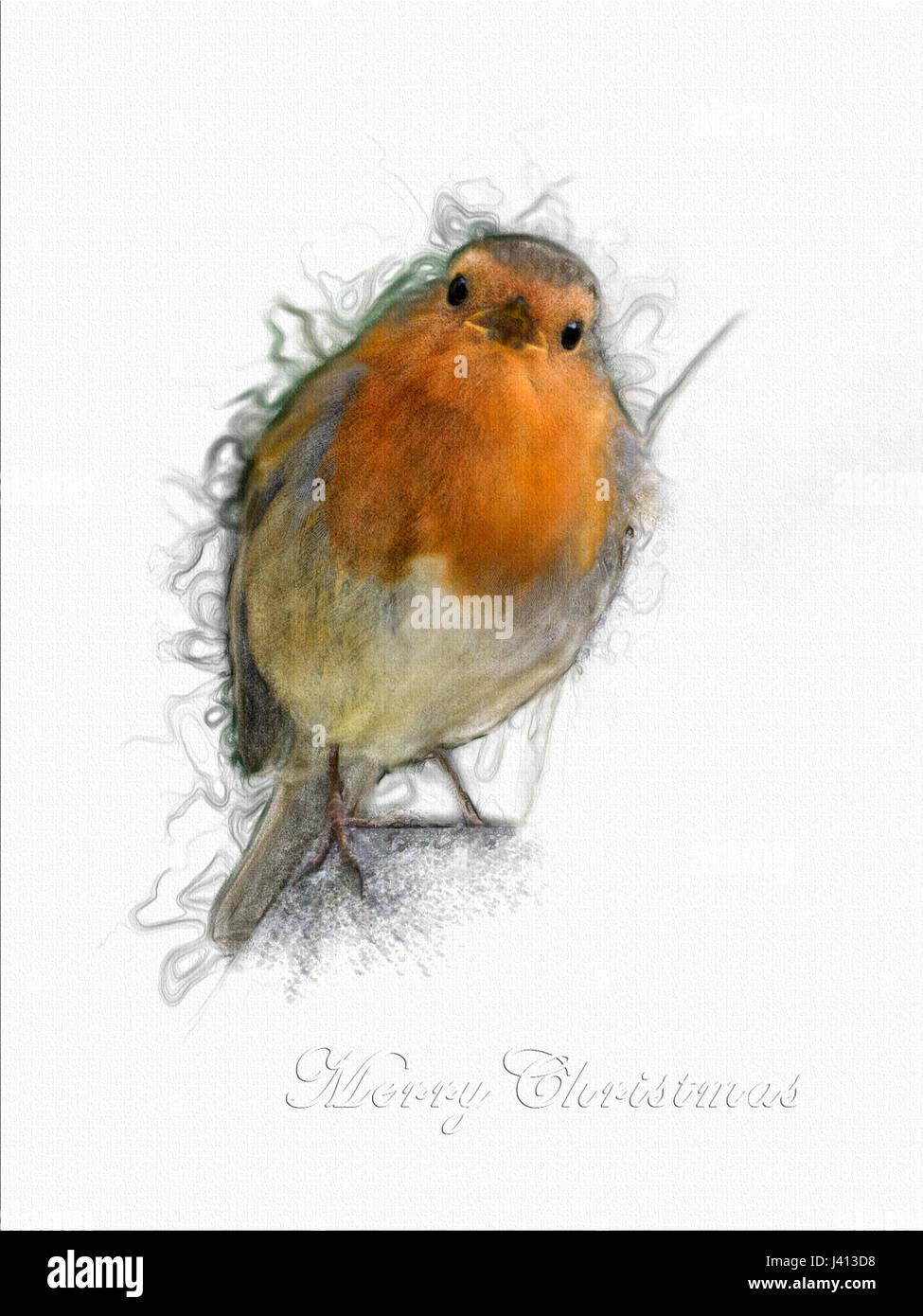 Robin singing Christmas greeting card Stock Photo: 140166244 - Alamy