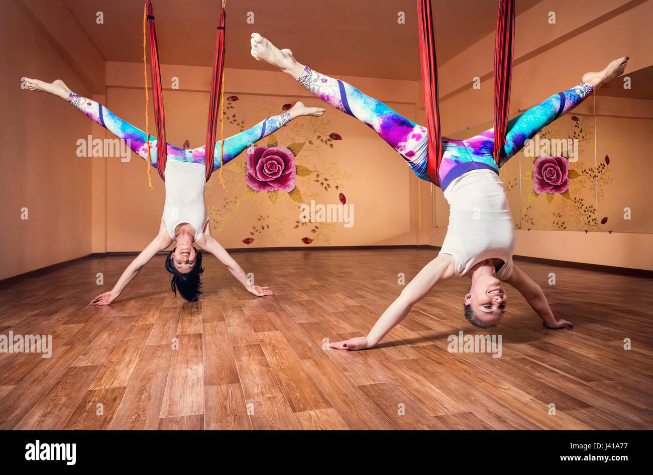 Two Young woman doing antigravity yoga inverted position at wellness studio with rose on the wall - Stock Image