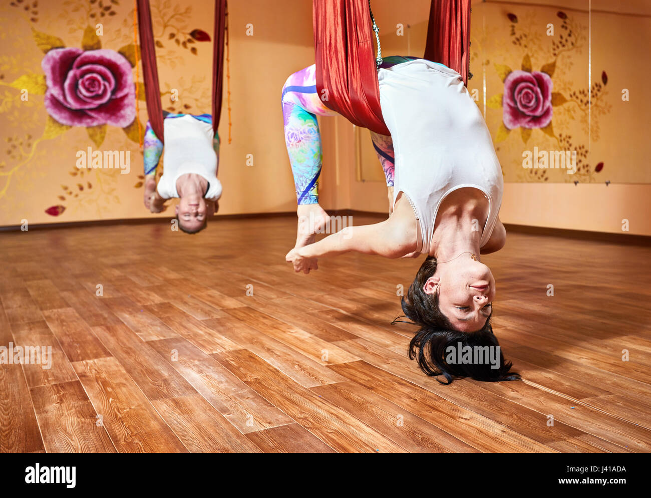 Two Young woman doing antigravity yoga in hammock at wellness studio with rose on the wall - Stock Image