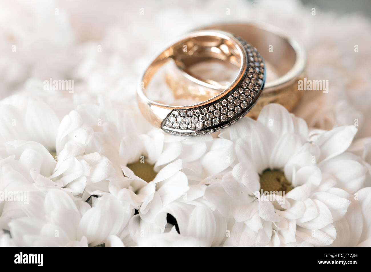 Wedding Rings On A White Flowers Pillow Accessories Wedding Closeup