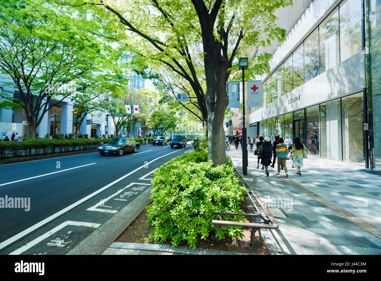 Omotesando shopping street showing the Celine Building and cafe in Tokyo, Japan - Stock Image