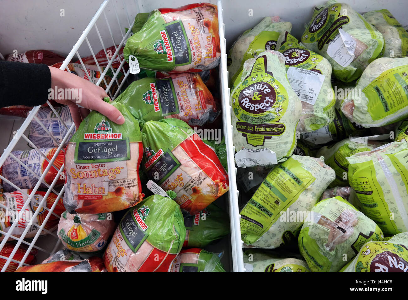 Poultry, deep frozen chicken packings in a supermarket - Stock Image