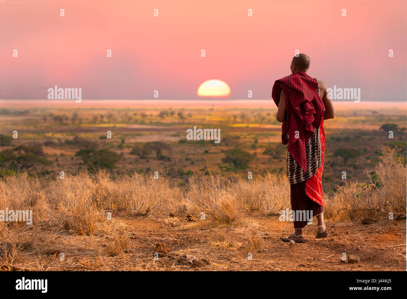 Massai man, wearing traditional blankets, overlooks Serengetti in Tanzania - Stock Image