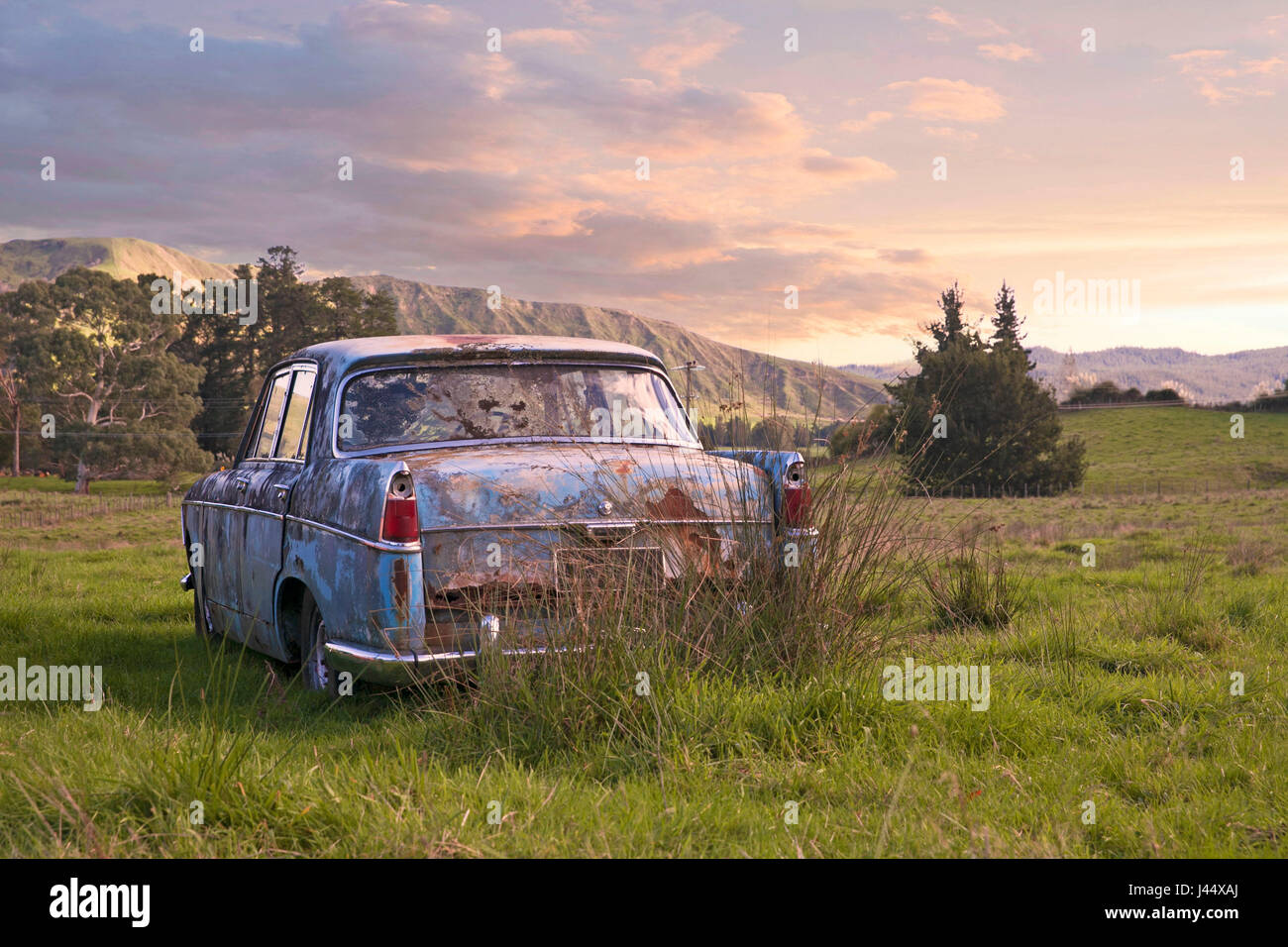 An old car deserted on wasteland and left to become overgrown with weeds - Stock Image