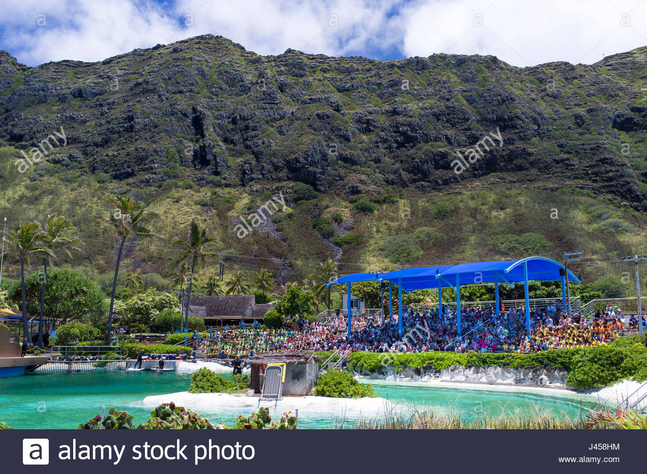 Large group of people sitting on bleachers watching the Dolphin Cove Show at Sea Life Park, Waimanalo, Oahu, Hawaii, - Stock Image