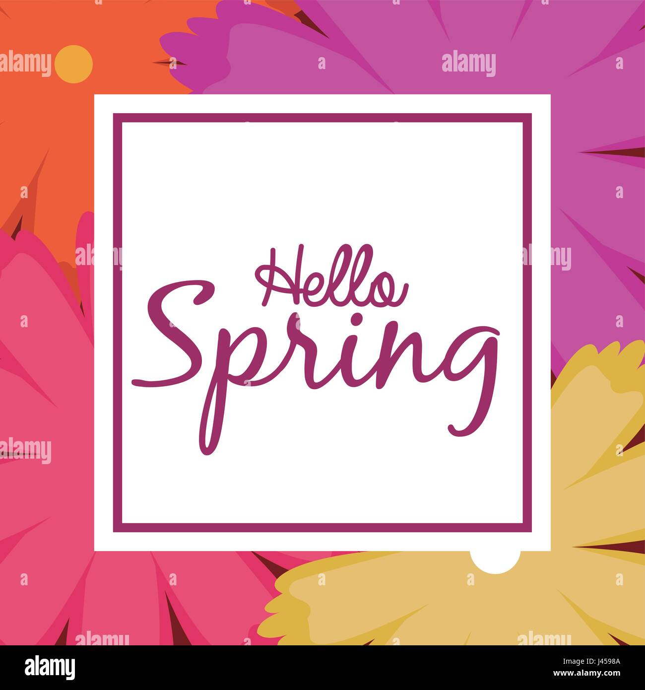 hello spring word multicolor flowers background - Stock Image